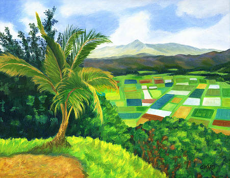 Hanalei Valley Kauai by Colleen Ward