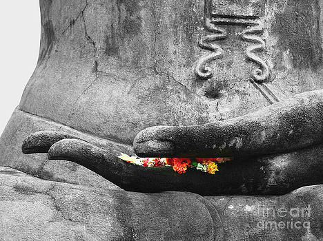 Hand of Buddha by Serena Bowles
