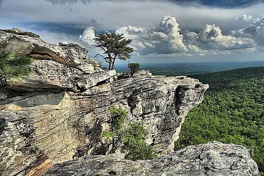 Adam Jewell - Hanging In North Carolina
