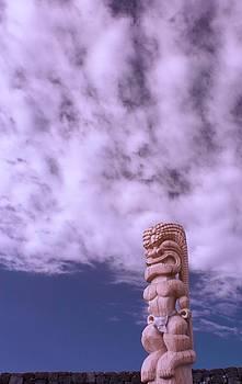 Hapaiali'i Heiau Tiki by James Walsh