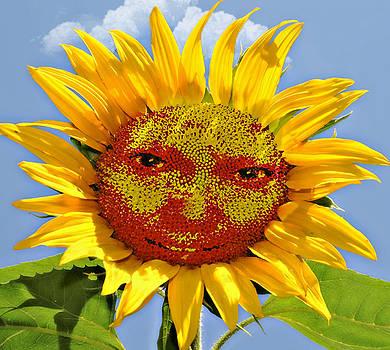 Happy Sunflower by Susan Leggett