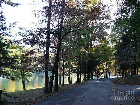 Happy Trail by Jody Curran