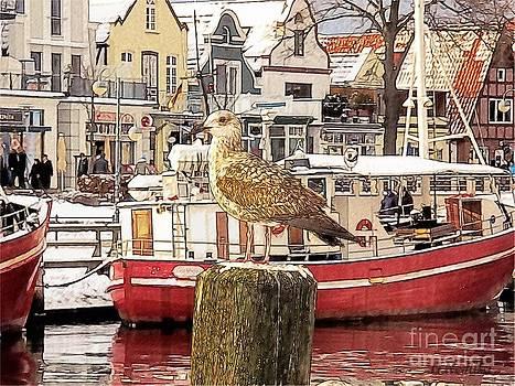 Harbor Life by Gabriele Nedilka