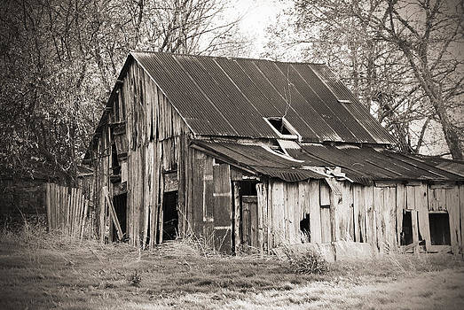 Hard Luck Barn by Lisa Moore