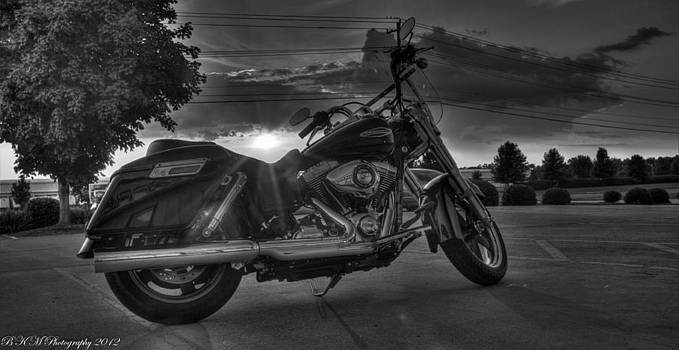 Harley Rays by Bobby Martin