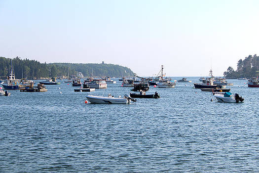 Harpswell Bay by Robbie Basquez