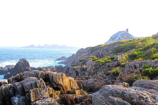 Harpswell Coast by Robbie Basquez