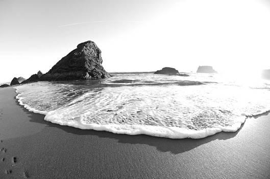 Margaret Pitcher - Harris Beach State Park monochrome