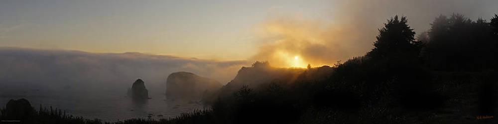 Mick Anderson - Harris Beach Sunset Panorama II