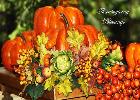 Diana Haronis - Harvest Blessings