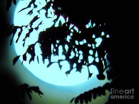 Judy Via-Wolff - Harvest Moon in Blue