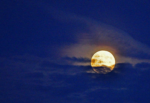 Harvest Moon by Peter  McIntosh