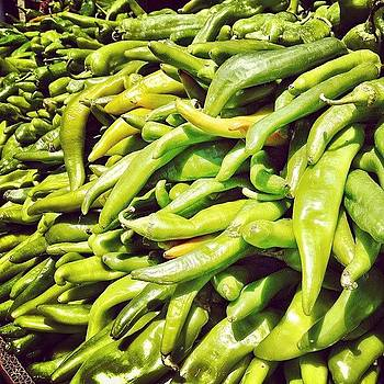 Hatch It Up! New Mexico Chile Style by Christopher Leon