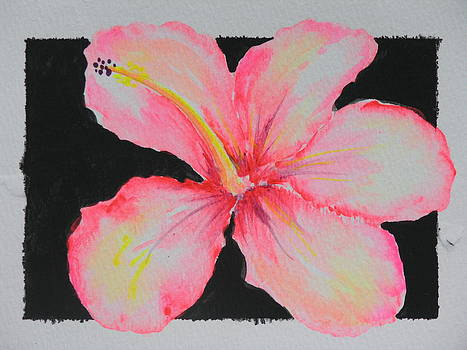 Hawaiian Hybiscus Flower by Peggy Mars