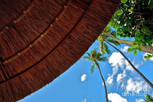 Hawaiian Siesta by Matthew Keoki Miller