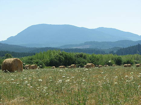 Hay Bales and Wide Open Spaces by Alyssa St Clair