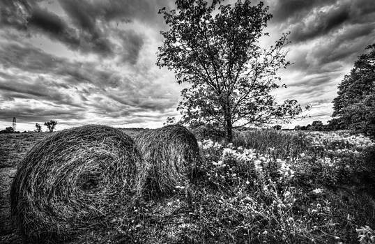Hay Bales by Jeff Smith