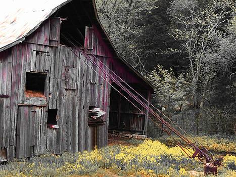 Hay Barn with Random Color by Patricia Erwin