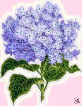 Hazy Hydrangea by Mary M Collins