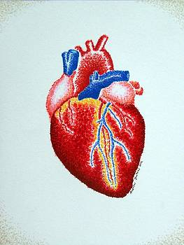 Heart  by Andrew Zeutzius