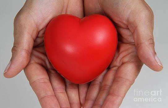 Photo Researchers, Inc. - Heart Disease Prevention