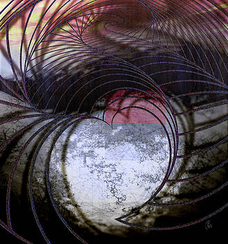 Heartscape Net by Florin Birjoveanu