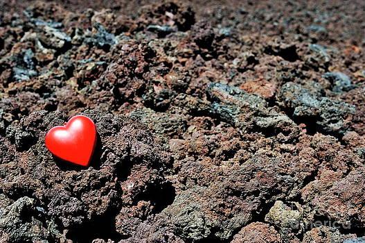 Sami Sarkis - Heartshape on cold lava rocks