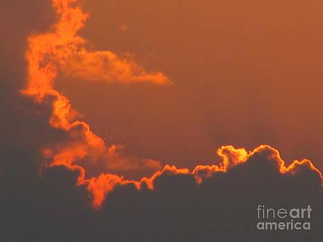 Heat by Michele Bishop