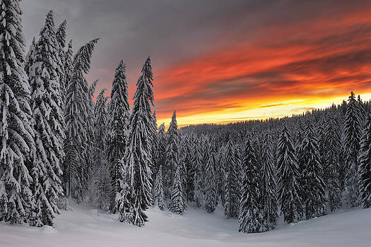 Heavens In Flames by Evgeni Dinev