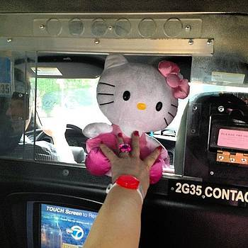 Hello, Kitty In The Cab by Gerry Visco