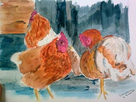 Hen Party by Jacqueline Hickey