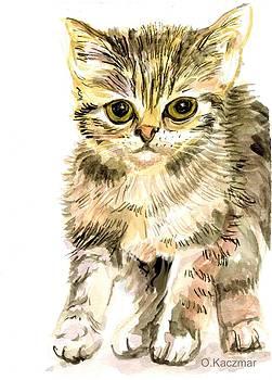 Olga Kaczmar - Here Kitty Kitty