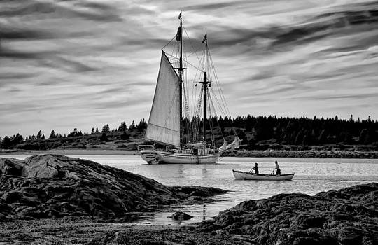 Fred LeBlanc - Heritage Anchored