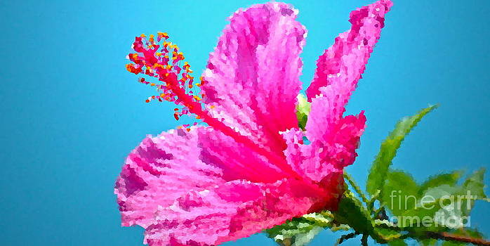 Gwyn Newcombe - Hibiscus Crystal Luster