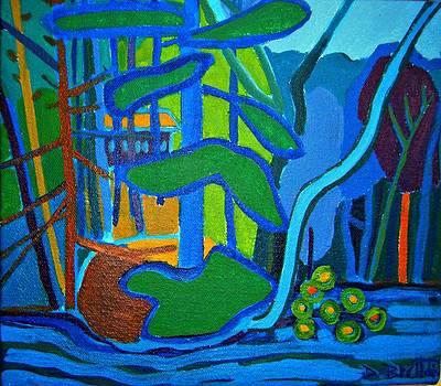 Hidden Cottage by Debra Bretton Robinson