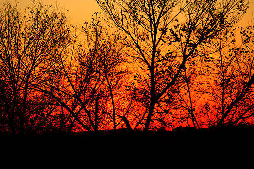 Hidden Sun  by Anna Maria  Kobalyan