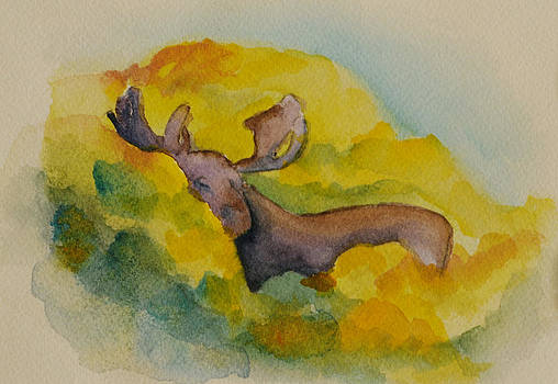 Hide and Seek by Cyrene Swallow