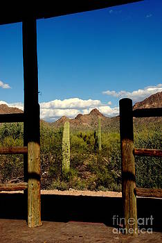 Susanne Van Hulst - High Chaparral Old Tuscon Arizona