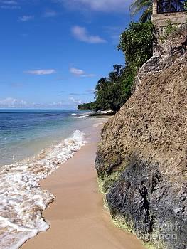 Sophie Vigneault - High Tide in Barbados
