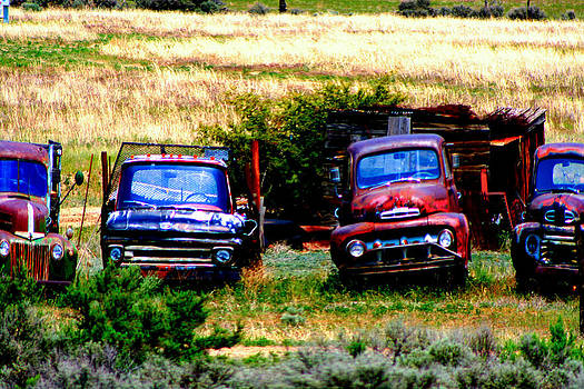 Hill Billy used auto sales by Andrea Camp