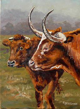 J P Childress - Hill Country Couple