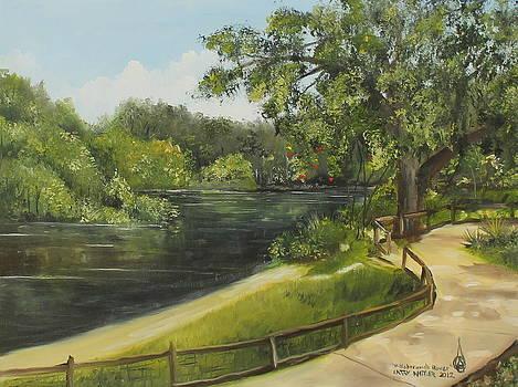 Hillsborough River by Larry Whitler