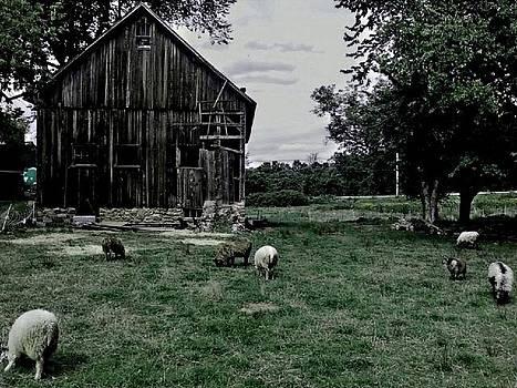 Hillstead Barn by KC Chapman