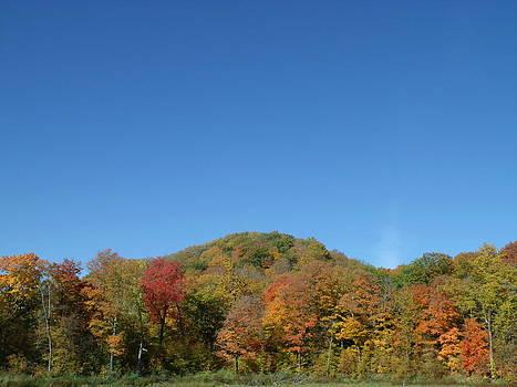 Hilly Fall Foliage by Brian  Maloney