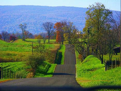 Hilly Mountain Road by Joyce Kimble Smith