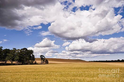 Himmerland by Wedigo Ferchland
