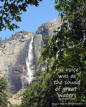 Grace Dillon - His Voice