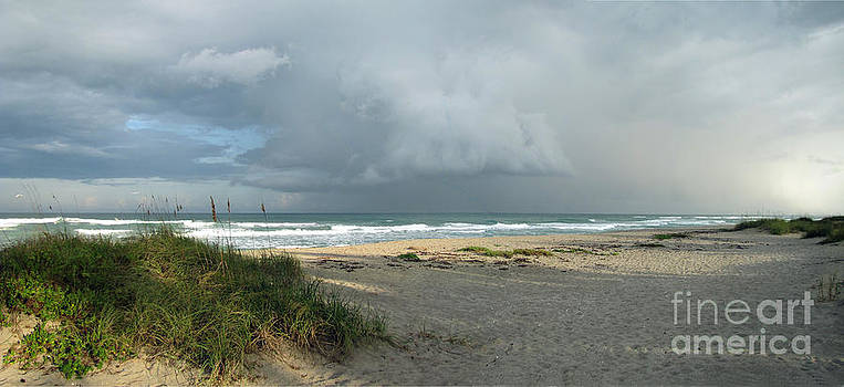 Hobe Sound Beach by Richard Nickson