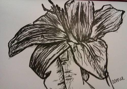 Holding Flower by Jamie Mah
