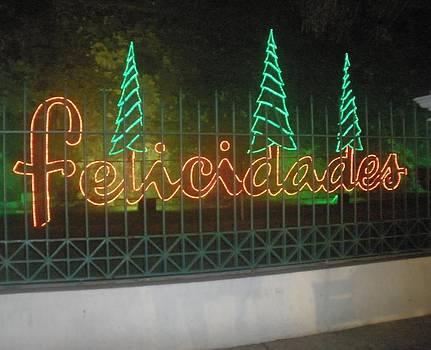 Holiday Greetings by Maria Medina